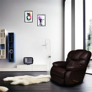 LaZy Boy Recliners-intro
